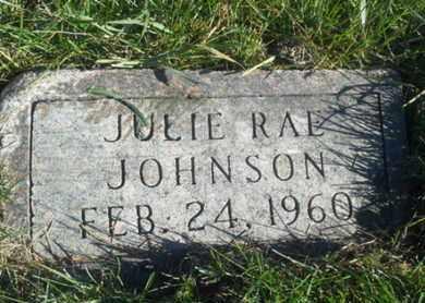 JOHNSON, JULIE RAE - Hamlin County, South Dakota | JULIE RAE JOHNSON - South Dakota Gravestone Photos