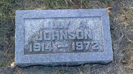 JOHNSON, LILLY A - Hamlin County, South Dakota | LILLY A JOHNSON - South Dakota Gravestone Photos