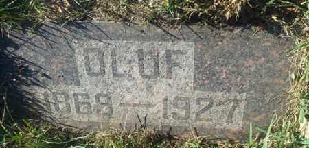 LARSON, OLUF - Hamlin County, South Dakota | OLUF LARSON - South Dakota Gravestone Photos