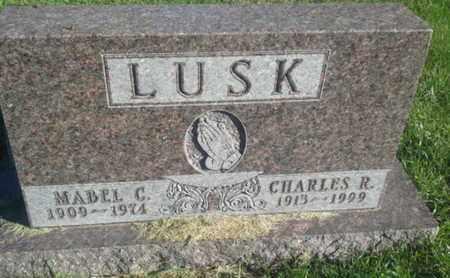 LUSK, CHARLES R - Hamlin County, South Dakota | CHARLES R LUSK - South Dakota Gravestone Photos