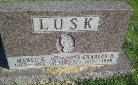 LUSK, MABLE C - Hamlin County, South Dakota | MABLE C LUSK - South Dakota Gravestone Photos