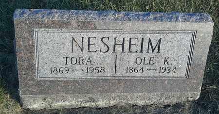 NESHEIM, OLE K - Hamlin County, South Dakota   OLE K NESHEIM - South Dakota Gravestone Photos
