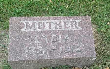 NEWTON, LYDIA - Hamlin County, South Dakota | LYDIA NEWTON - South Dakota Gravestone Photos