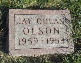 OLSON, JAY ODEAN - Hamlin County, South Dakota | JAY ODEAN OLSON - South Dakota Gravestone Photos