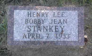 STANKEY, HENRY LEE - Hamlin County, South Dakota | HENRY LEE STANKEY - South Dakota Gravestone Photos