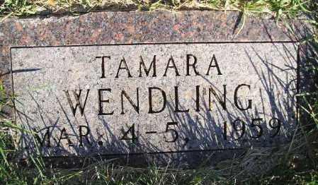 WENDLING, TAMARA - Hamlin County, South Dakota   TAMARA WENDLING - South Dakota Gravestone Photos