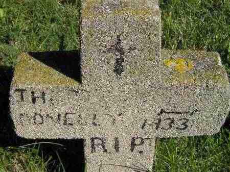 DONELLY, THEODORE - Hanson County, South Dakota | THEODORE DONELLY - South Dakota Gravestone Photos