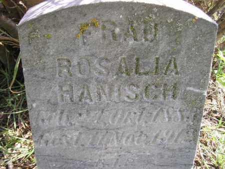 HANISCH, ROSALIA - Hanson County, South Dakota   ROSALIA HANISCH - South Dakota Gravestone Photos