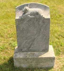 MARONEY, JESSIE - Hanson County, South Dakota   JESSIE MARONEY - South Dakota Gravestone Photos
