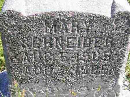 SCHNEIDER, MARY (BABY) - Hanson County, South Dakota   MARY (BABY) SCHNEIDER - South Dakota Gravestone Photos