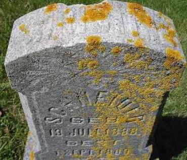 SCHNEIDER, WINSTON - Hanson County, South Dakota   WINSTON SCHNEIDER - South Dakota Gravestone Photos
