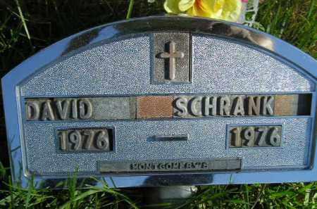 SCHRANK, DAVID - Hanson County, South Dakota   DAVID SCHRANK - South Dakota Gravestone Photos
