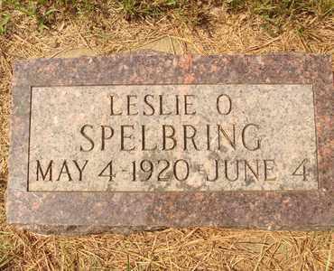 SPELBRING, LESLIE O. - Hanson County, South Dakota | LESLIE O. SPELBRING - South Dakota Gravestone Photos