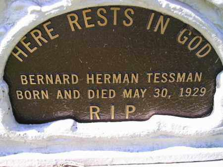 TESSMAN, BERNARD HERMAN - Hanson County, South Dakota | BERNARD HERMAN TESSMAN - South Dakota Gravestone Photos