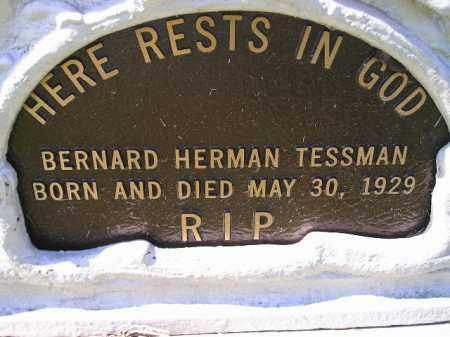 TESSMAN, BERNARD HERMAN - Hanson County, South Dakota   BERNARD HERMAN TESSMAN - South Dakota Gravestone Photos