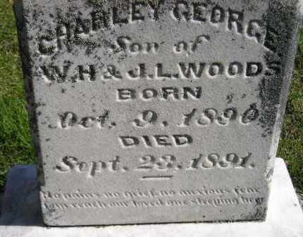 WOODS, CHARLEY GEORGE - Hanson County, South Dakota | CHARLEY GEORGE WOODS - South Dakota Gravestone Photos