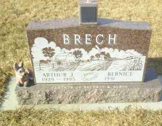 BRECH, ARTHUR - Hutchinson County, South Dakota   ARTHUR BRECH - South Dakota Gravestone Photos