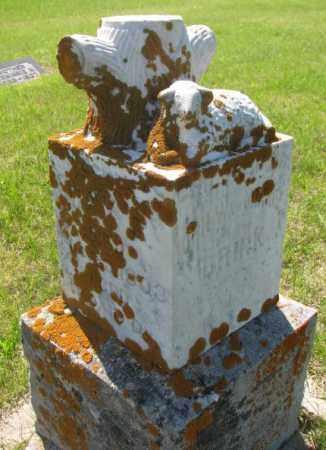 BRINK, MARY E? - Hutchinson County, South Dakota | MARY E? BRINK - South Dakota Gravestone Photos