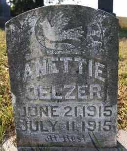 DELZER, ANETTIE - Hutchinson County, South Dakota | ANETTIE DELZER - South Dakota Gravestone Photos