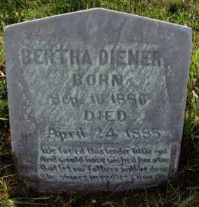 DIENER, BERTHA - Hutchinson County, South Dakota | BERTHA DIENER - South Dakota Gravestone Photos