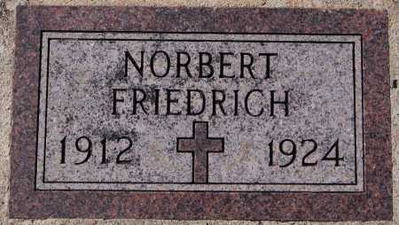 FRIEDRICH, NORBERT - Hutchinson County, South Dakota | NORBERT FRIEDRICH - South Dakota Gravestone Photos