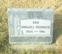 FRIEDRICH, RONALD - Hutchinson County, South Dakota   RONALD FRIEDRICH - South Dakota Gravestone Photos