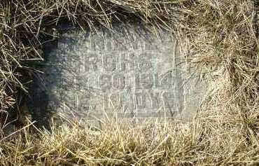 GROHS, GENIEVE - Hutchinson County, South Dakota | GENIEVE GROHS - South Dakota Gravestone Photos