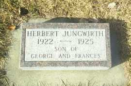 JUNGWIRTH, HERBERT - Hutchinson County, South Dakota | HERBERT JUNGWIRTH - South Dakota Gravestone Photos