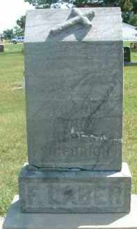 LABER, FRANK HENRY - Hutchinson County, South Dakota | FRANK HENRY LABER - South Dakota Gravestone Photos