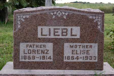LIEBL, ELISE - Hutchinson County, South Dakota | ELISE LIEBL - South Dakota Gravestone Photos