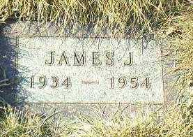 SCHMIDT, JAMES - Hutchinson County, South Dakota | JAMES SCHMIDT - South Dakota Gravestone Photos