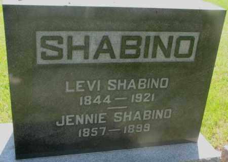 SHABINO, LEVI - Hutchinson County, South Dakota | LEVI SHABINO - South Dakota Gravestone Photos