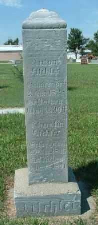 TISCHLER, THERAFIA - Hutchinson County, South Dakota | THERAFIA TISCHLER - South Dakota Gravestone Photos