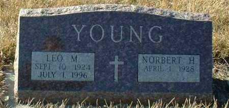 YOUNG, LEO - Hutchinson County, South Dakota | LEO YOUNG - South Dakota Gravestone Photos