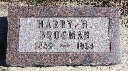 BRUGMAN, HARRY - Jackson County, South Dakota | HARRY BRUGMAN - South Dakota Gravestone Photos