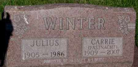 FASTNACHT WINTER, CARRIE - Jerauld County, South Dakota | CARRIE FASTNACHT WINTER - South Dakota Gravestone Photos
