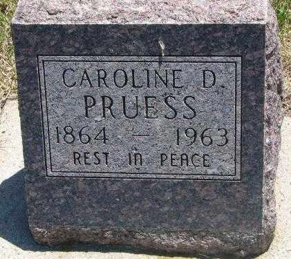 PRUESS, CAROLINE D. - Jones County, South Dakota | CAROLINE D. PRUESS - South Dakota Gravestone Photos