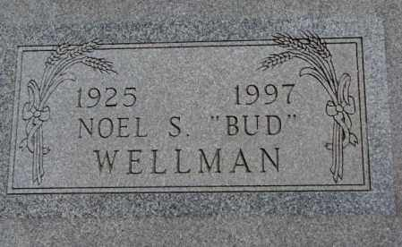 "WELLMAN, NOEL S. ""BUD"" - Jones County, South Dakota 