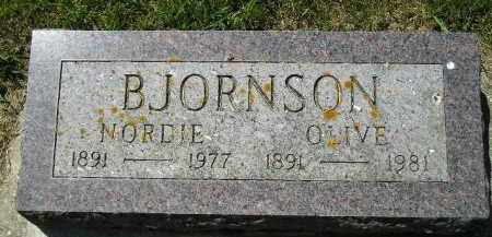 BJORNSON, OLIVE - Kingsbury County, South Dakota | OLIVE BJORNSON - South Dakota Gravestone Photos
