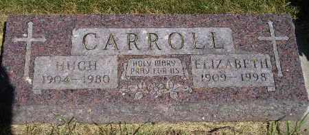 CARROLL, ELIZABETH - Kingsbury County, South Dakota | ELIZABETH CARROLL - South Dakota Gravestone Photos