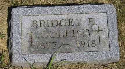 COLLINS, BRIDGET E. - Kingsbury County, South Dakota | BRIDGET E. COLLINS - South Dakota Gravestone Photos