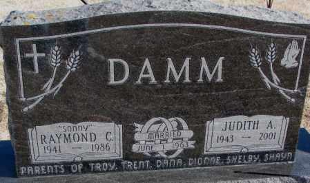 DAMM, JUDITH A. - Kingsbury County, South Dakota | JUDITH A. DAMM - South Dakota Gravestone Photos