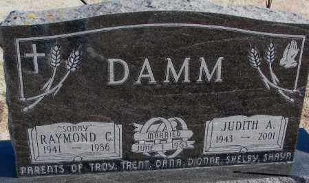 DAMM, JUDITH A. - Kingsbury County, South Dakota | JUDITH A. DAMM - South Dakota Gravestone Photos