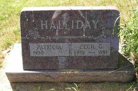 HALLIDAY, CECIL G. - Kingsbury County, South Dakota | CECIL G. HALLIDAY - South Dakota Gravestone Photos