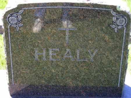 HEALY, FAMILY STONE - Kingsbury County, South Dakota   FAMILY STONE HEALY - South Dakota Gravestone Photos