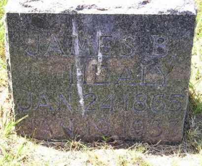 HEALY, JAMES B. - Kingsbury County, South Dakota   JAMES B. HEALY - South Dakota Gravestone Photos