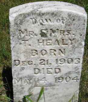 HEALY, T. - Kingsbury County, South Dakota | T. HEALY - South Dakota Gravestone Photos