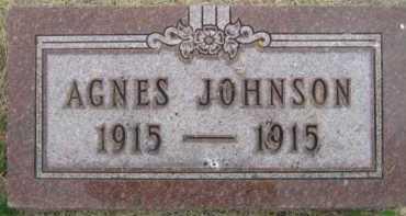 JOHNSON, AGNES - Kingsbury County, South Dakota | AGNES JOHNSON - South Dakota Gravestone Photos