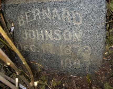 JOHNSON, BERNARD - Kingsbury County, South Dakota | BERNARD JOHNSON - South Dakota Gravestone Photos