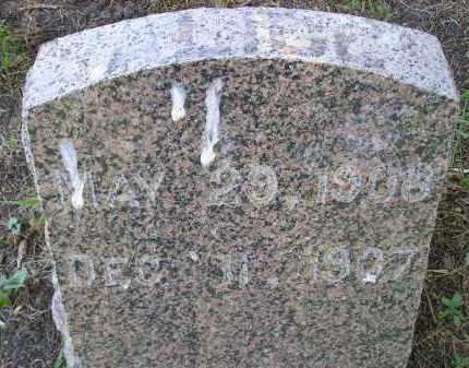 O'HARA, ALICE - Kingsbury County, South Dakota | ALICE O'HARA - South Dakota Gravestone Photos